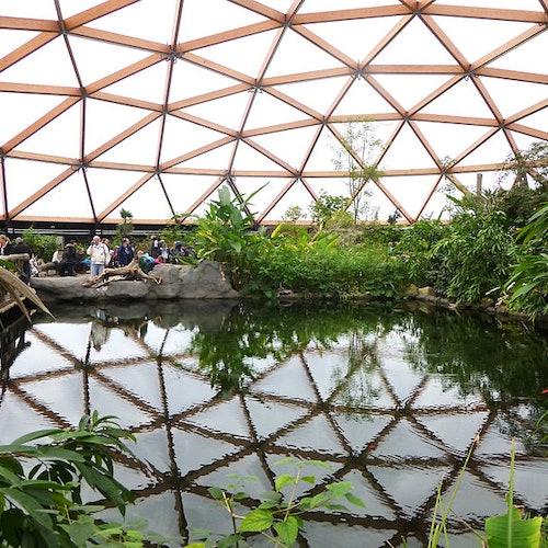 ロッテルダム動物園(ブライドープ動物園)...の写真