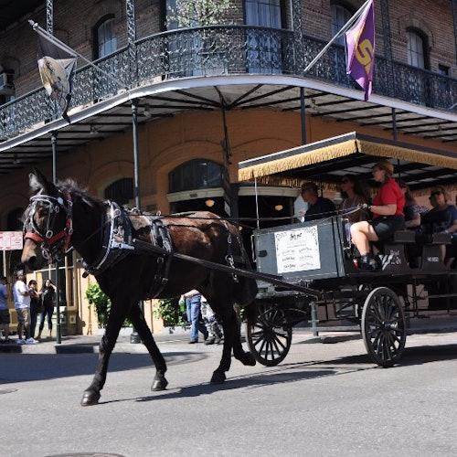 Barrio Francés en carruaje tirado por mula: Tour de 60 minutos