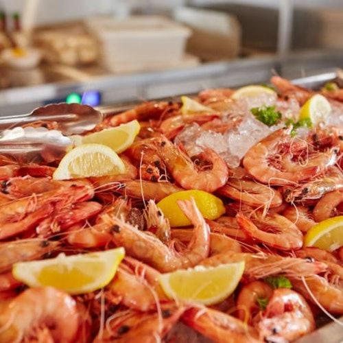 Buffet Lunch Cruise Gold Coast