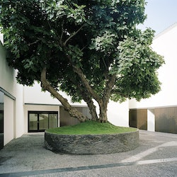 Museo Picasso Málaga: Guided Visit