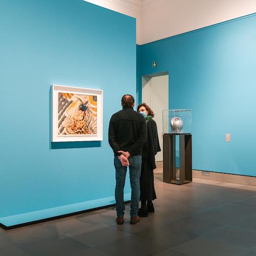 Museo de Bellas Artes de Gante