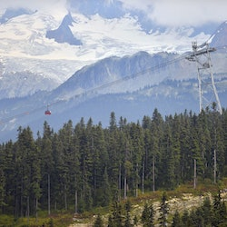 Tickets, museums, attractions,Sea to Sky Gondola,Excursion to Whistler