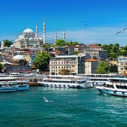 Bosphorus Cruise 1.5 Hours