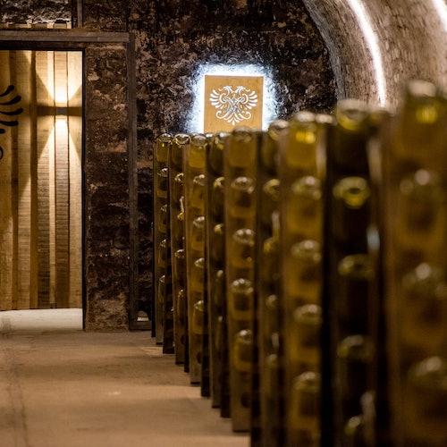 Schlumberger Cellar World