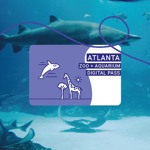 Atlanta Zoo + Aquarium Pass