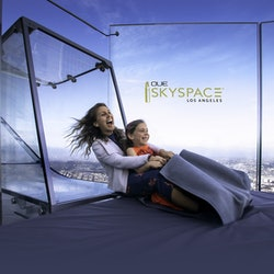 OUE Skyspace: Fast Track
