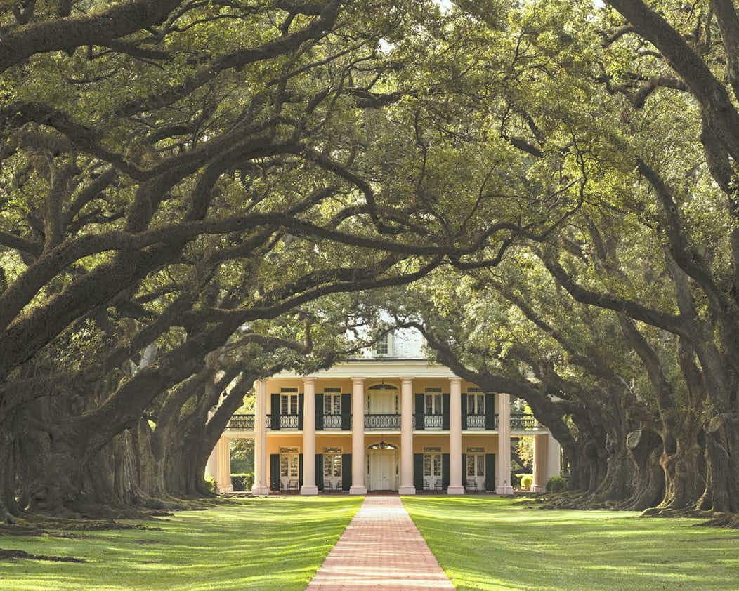 Image result for Oak Alley Plantation