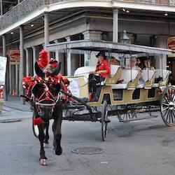 Tickets, museos, atracciones,Tour por Barrio Francés