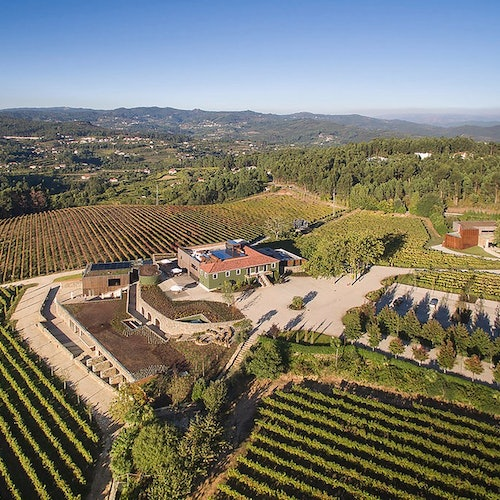 Vinho Verde Region: Small Group Tour from Porto with Lunch