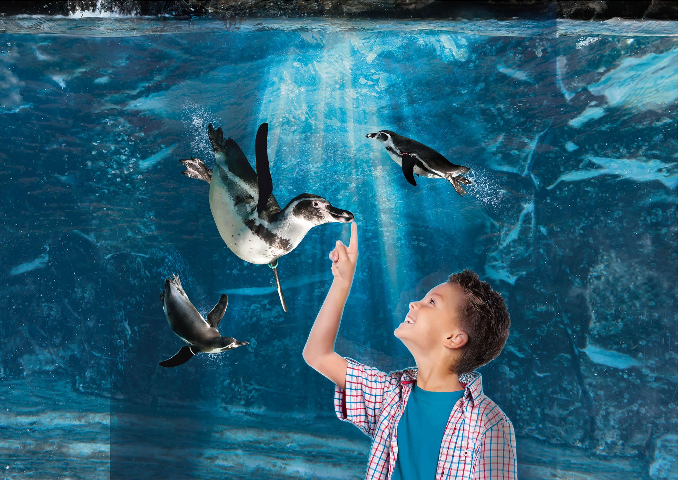 Tickets for Aquarium of Cattolica: Skip The Line