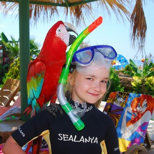 Combo Sealanya Seapark: Entrada + Comida