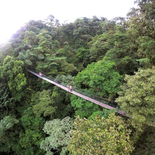 Mistico Arenal Hanging Bridges Park