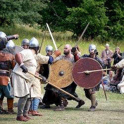Tickets, museos, atracciones,Excursión a la ciudad vikinga de Birka