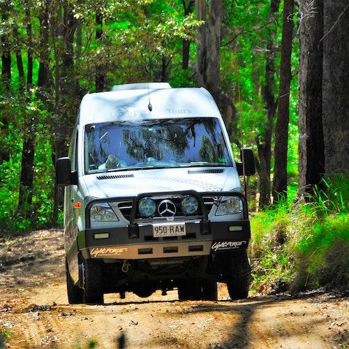 Monte Tamborine: Tour en 4x4 desde la Gold Coast