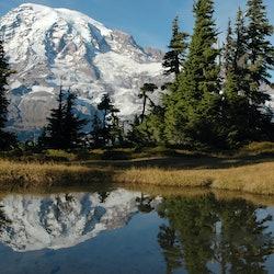 Tickets, museos, atracciones,Excursión a Monte Rainier