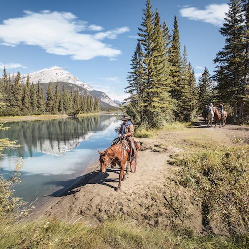 Pícnic ranchero: Paseo a caballo o en carruaje desde Banff