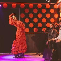 Imagen Flamenco-Show Tarantos