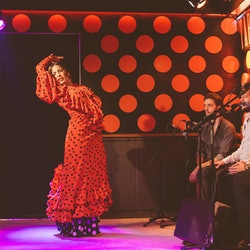 Tarantos Flamenco Show