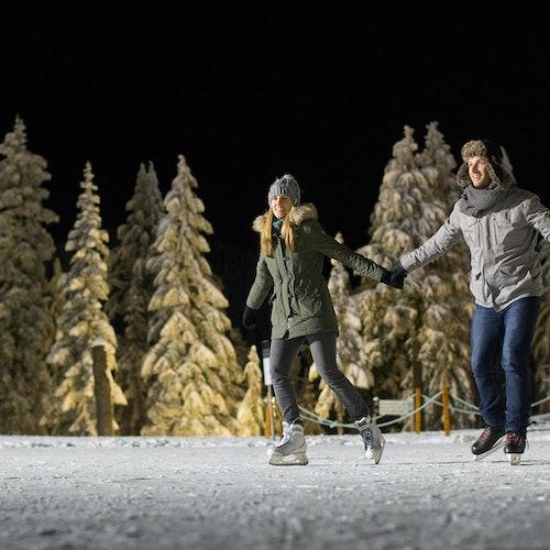 Montaña Grouse: Admisión de remontes de esquí y snowboard