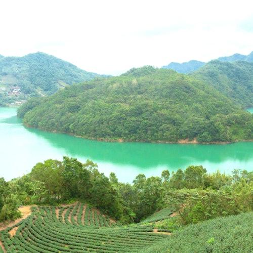 Lago de las mil islas y plantación de té de Pinglin: Visita guiada desde Taipéi