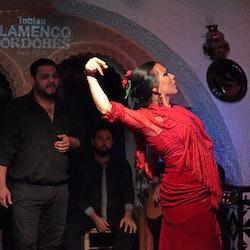 Tablao Cordobés: Flamenco Show + Drink