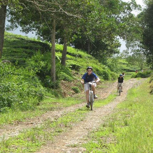 Tour de kayak y ciclismo de Pulau Ubin con comida