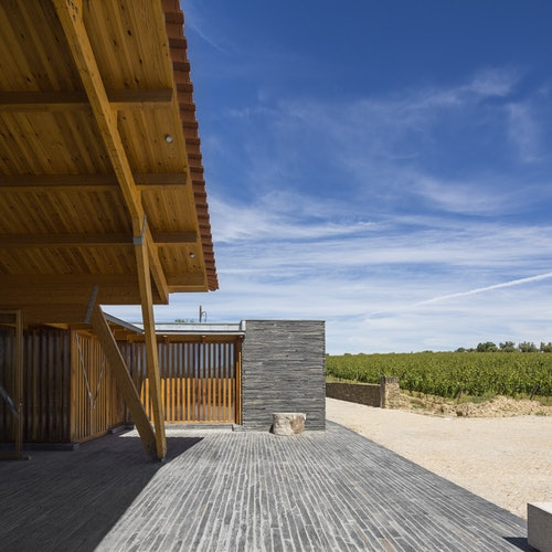 Valle del Duero: Excursión y cata de vinos