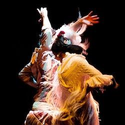 Flamenco Dance Museum - Museum & Show