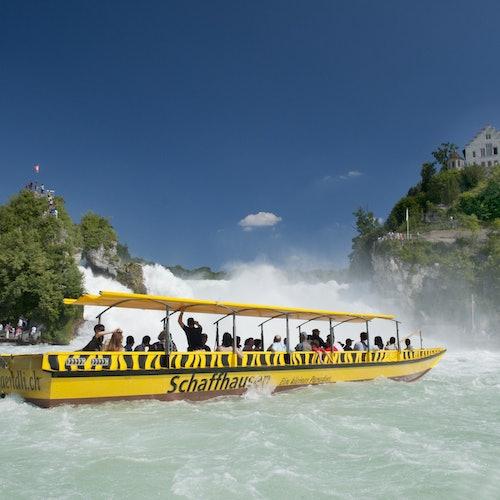 Rhine Falls & Stein am Rhein: Transport from Zurich
