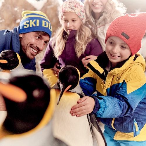 Ski Dubai: Acceso rápido: Pista de esquí