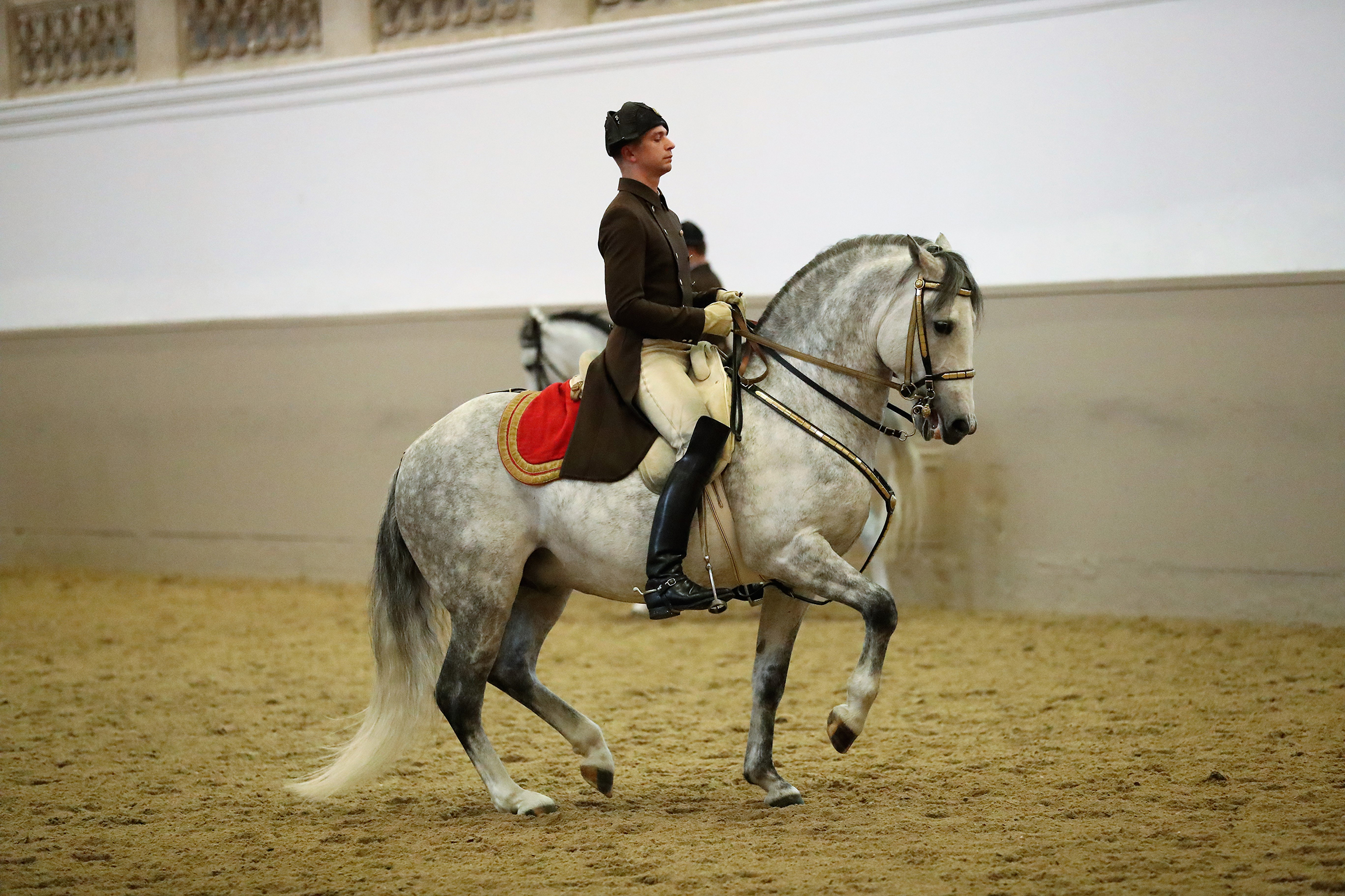 Tickets for Spanish Riding School: Performances