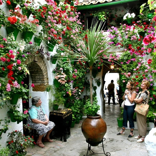 Patios de Córdoba: Guided Tour