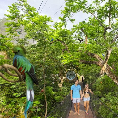 Parque Xcaret: Acceso rápido y Transporte