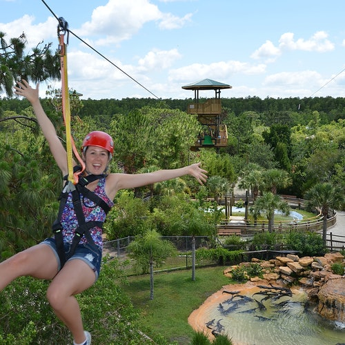 Gatorland Orlando: Tirolesa Screamin' Gator
