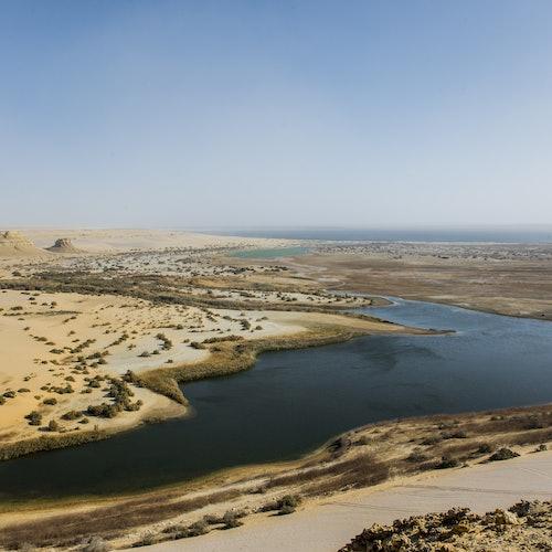 4x4 Desert Safari with Sandboarding & Camel Ride from Cairo or Giza
