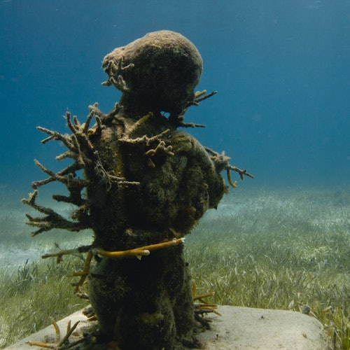 Museo Subacuático Punta Nizuc: Esnórquel + paseo en barco con suelo de cristal