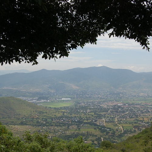 Monte Albán: Transporte y tour guiado