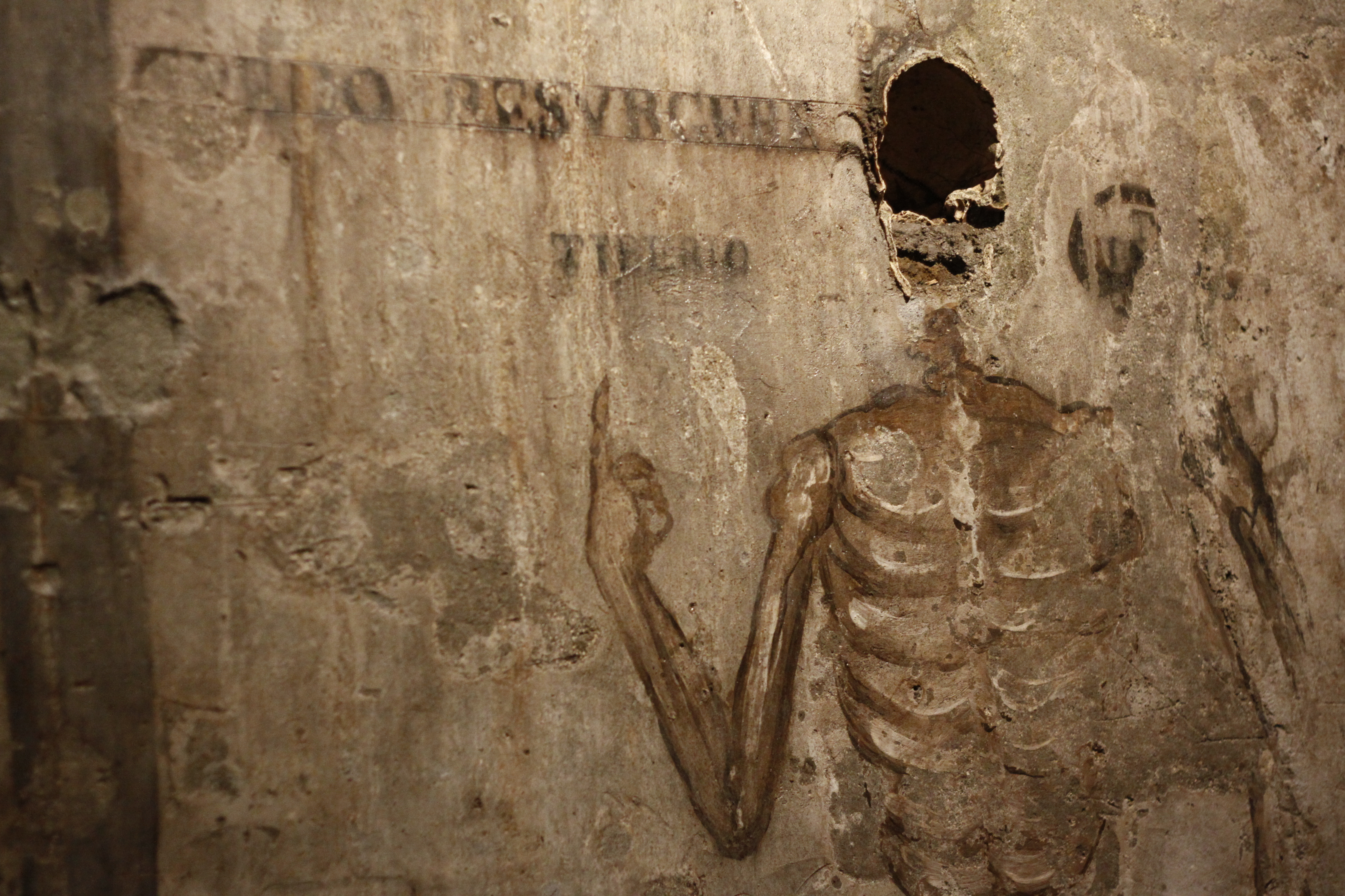 Tickets for Catacombs of San Gaudioso: Guided Visit