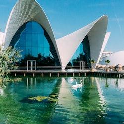 Oceanogràfic of Valencia: Skip The Line