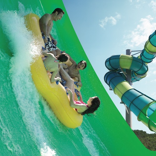 Aquatica San Antonio y SeaWorld San Antonio: Ticket combinado