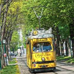 Vienna Ring Tram Tour