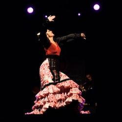 Las Ventas: Bullring Tour + Flamenco Show