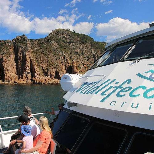 Crucero por el cabo Woolamai desde Phillip Island