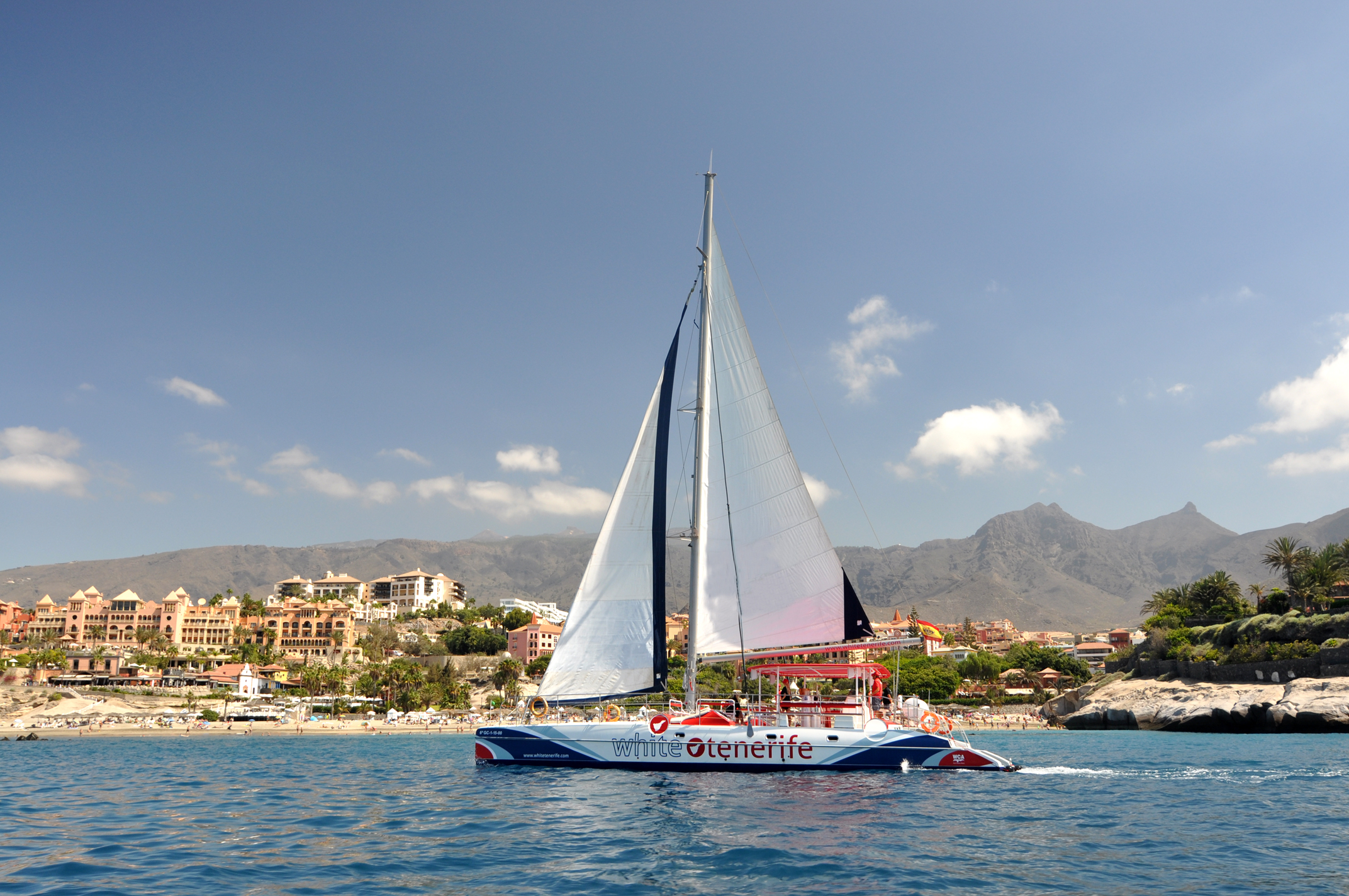 Tickets for Whale and Dolphin Watching and Listening with Catamaran