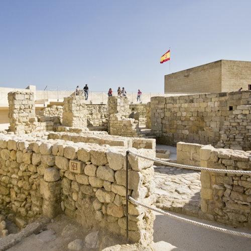 Fortaleza de La Mota: Sin colas