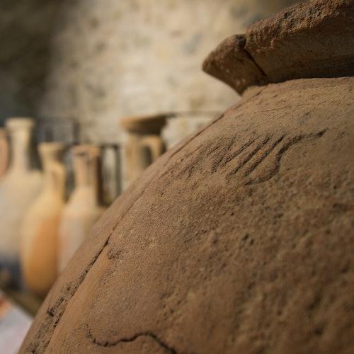 Museos gastronómicos: Museo del Vino