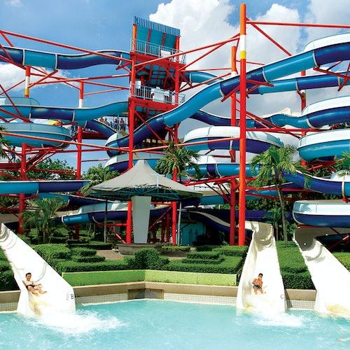 Siam Amazing Park + Almuerzo