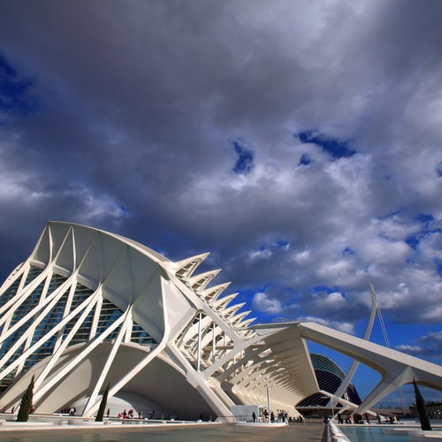 Ciutat de les Arts i les Ciències - Museo de las Ciencias: Sin Colas