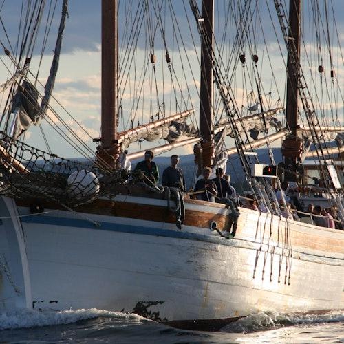 Crucero turístico por el fiordo