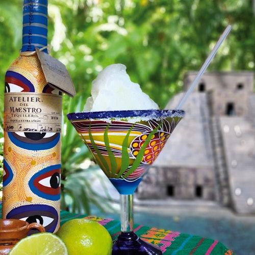 Discover Mexico Park Cozumel: Entrada + Degustación de Tequila